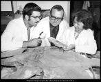 [Dr. William D. Tidwell and students examine a fossil discovered in southwest Colorado, 1971]