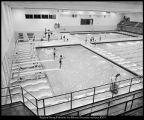 Image of Photograph of Stephen L. Richards Physical Education Building natatorium