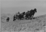 4-horse team pulling supply wagon