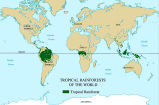 Map of Disappearing Rain Forests;
