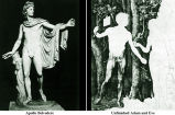 Apollo Belvedere compared with Unfinished Adam and Eve;
