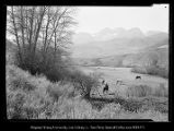 [Provo Canyon looking on Timpanogos (where Deer Creek Dam is now)];