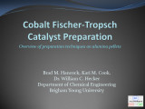 Cobalt Fischer-Tropsch Catalyst Preparation: Overview of preparation techniques on alumina pellets