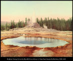 Castle Geyser, Yellowstone Nat'l Park, 1901, #53313
