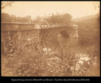 Ceylon. Satinwood Bridge over the Mahavale - ganges [sic. Mahaweli] near Peridiniya [sic....