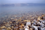 Salt Covered Rocks on Shoreline, Dead Sea