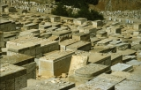 Cemetery on Mt. of Olives