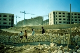 Arabs Doing Israeli Construction