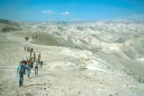 BYU Students Walking Through Judean Wilderness