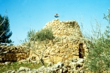 Watchtower in Hill Country of Samaria
