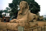 Alabaster Sphinx at Memphis