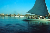 Felucca--A Nile Sailboat