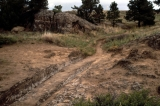 Wagon Ruts Near Register Cliff