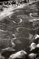 Black and White Aerial Photograph of Jordan River