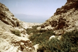 Dead Sea from En Gedi