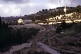 Gethsemane from Kidron Valley