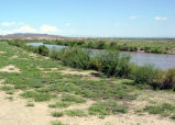 Mormon Battalion Trail, Rio Grande River, Hatch, New Mexico