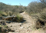 Mormon Battalion Trail, Guadaloupe Canyon near Douglas, Arizona