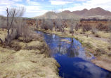 Mormon Battalion Trail, Battle of the Bulls, San Pedro River, Arizona