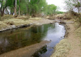 Mormon Battalion Trail, San Pedro River, near Cochise County, Arizona