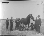 THS animal husbandry class, 1915. Carl Carlson, Henre C. Beesley, J.R. Maughn (teacher), others...